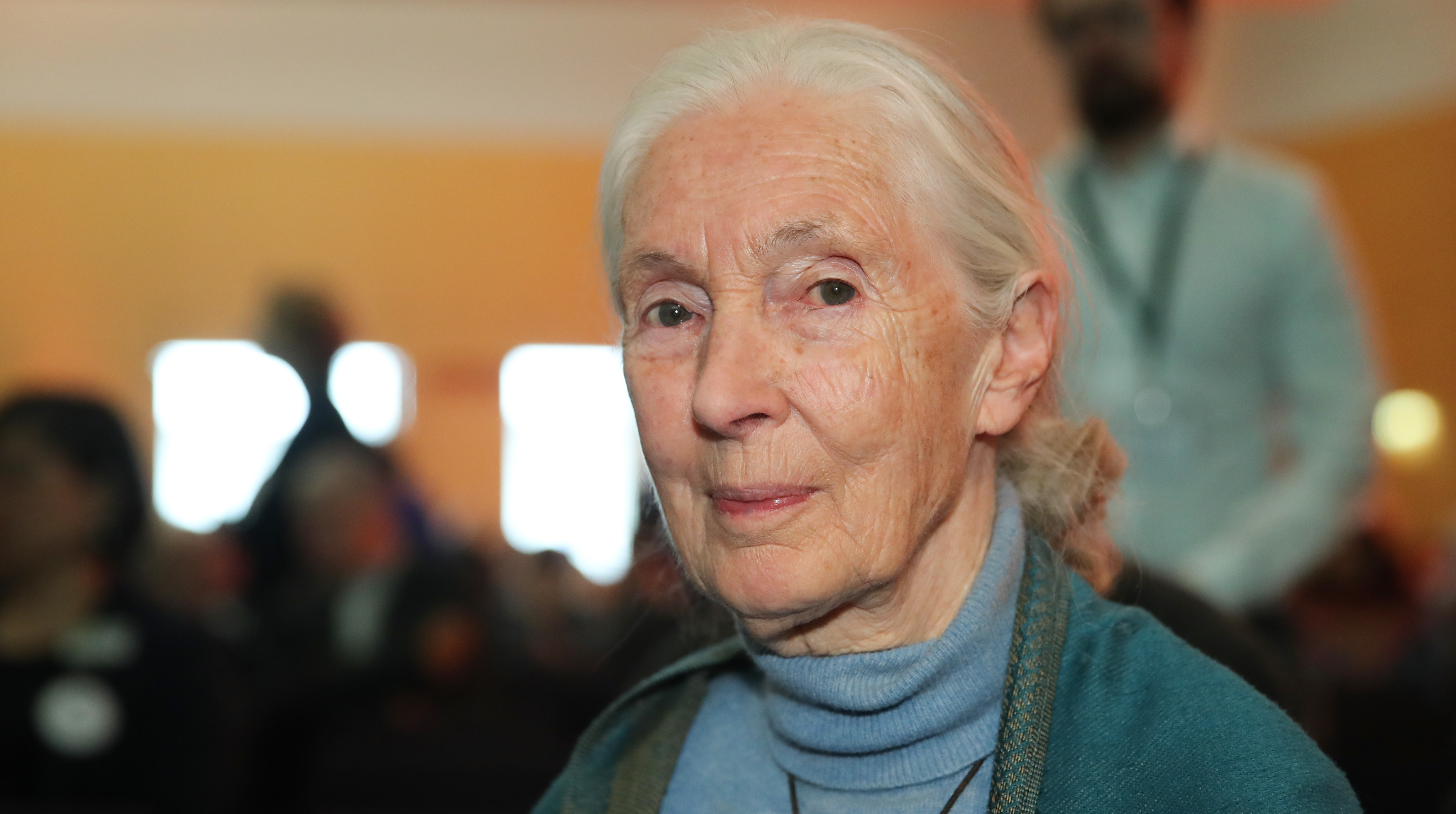 Jane Goodall's The Book of Hope Coming in 2021